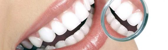 Lupa dientes